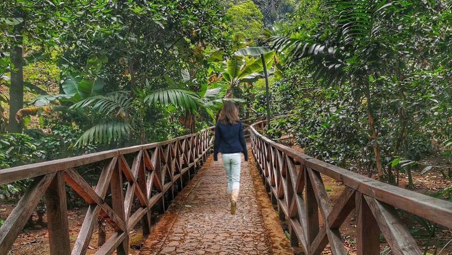 persona caminando en Granjas de Caoba Guatemala