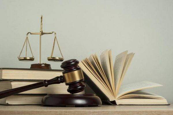 books laws wrotten by gutierrez mayorga and lisa